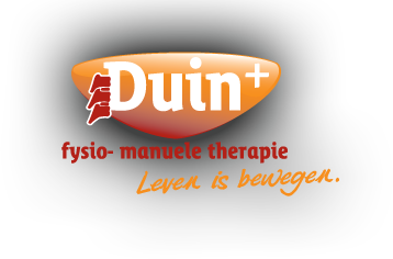 Duin Plus Logo